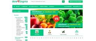 Покупка семян в интернет-магазинах