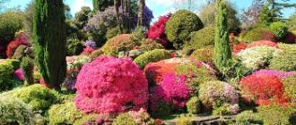 Сады Леонардсли – Сады и парки мира