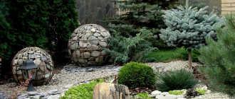 Натуральный камень в дизайне сада – Ландшафтный дизайн